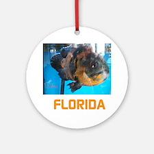 FLORIDA AVINS FISH. Round Ornament
