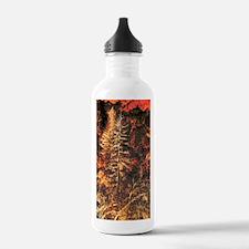 Wildfire! Water Bottle