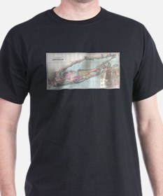 Vintage Map of Long Island (1880) T-Shirt