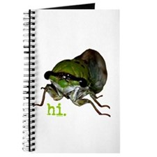 Cicada hi. Journal