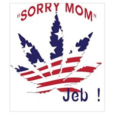 Jeb Bush Sorry Mom Pot Leaf Poster