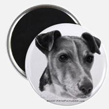 Smooth Fox Terrier Magnet