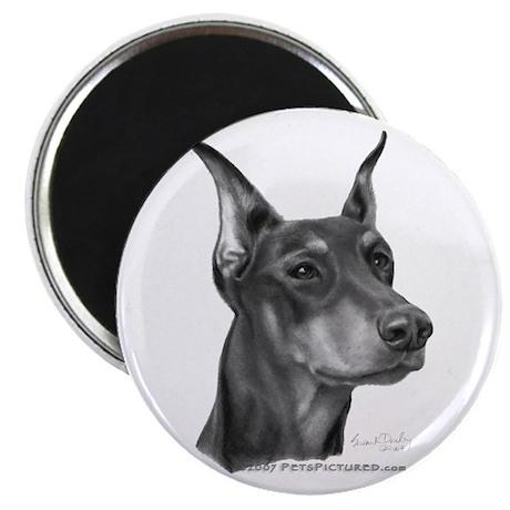 """Doberman Pinscher 2.25"""" Magnet (100 pack)"""