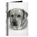 Lindsay - Yellow Lab Mix Journal
