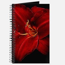 Cute Black and red Journal