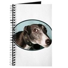 Guilty Greyhound in Oval Journal