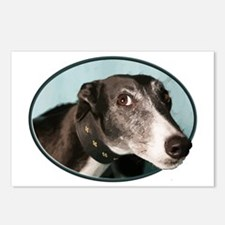 Guilty Greyhound in Oval Postcards (Package of 8)