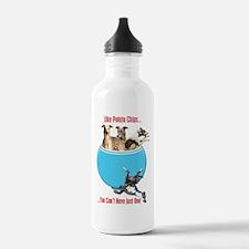 Greyhounds Like Potato Water Bottle
