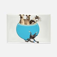 Greyhounds Like Potato Chips Magnets