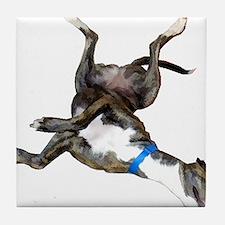 Cockroaching Greyhound Tile Coaster