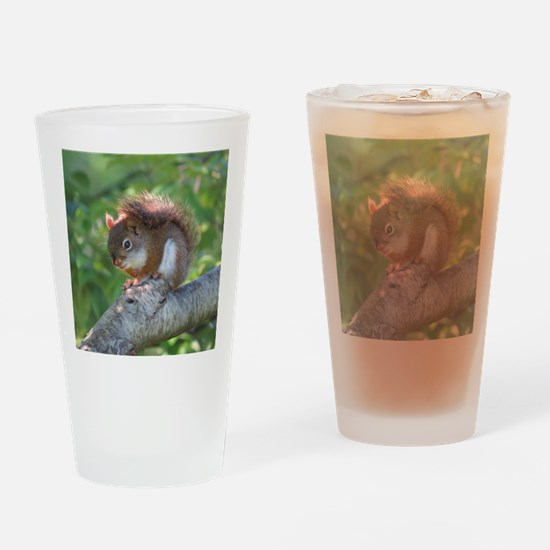Red Squirrel Drinking Glass