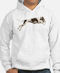 Run Like the Wind Hoodie