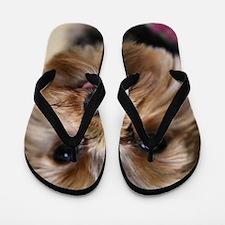Unique Yorkshire terriers Flip Flops