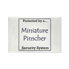 Min Pin Security Rectangle Magnet