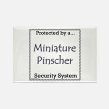 Min Pin Security Rectangle Magnet