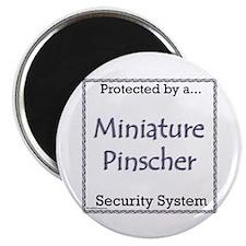 Min Pin Security Magnet