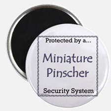Min Pin Security Magnet
