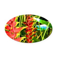 Tropical Oval Car Magnet