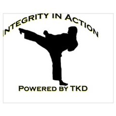 Taekwondo Integrity in Action Poster