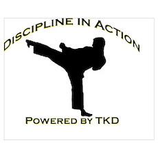 Taekwondo Discipline in Action Poster