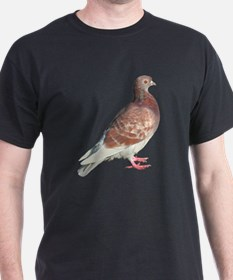 Red Pigeon (Isolated) T-Shirt