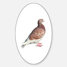 Red Pigeon (Isolated) Sticker (Oval)