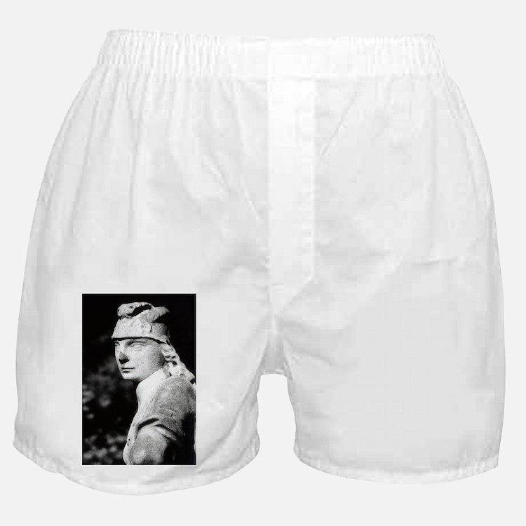 The Fast Stood Still Boxer Shorts