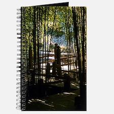 Through The Bamboo Journal