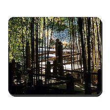Through The Bamboo Mousepad