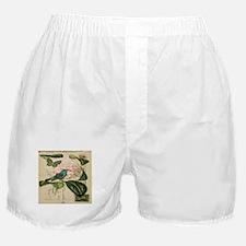 french botanical flower bird Boxer Shorts