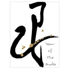 Year of the Snake - Chinese Zodiac Framed Print
