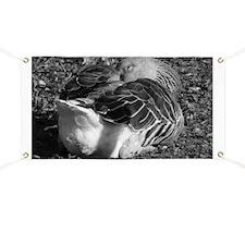 Sleepy Graylag Goose (Black and White) Banner