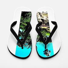 Laguna Beach. Flip Flops