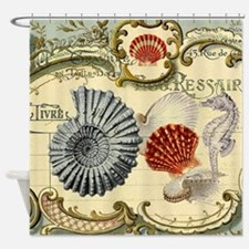 elegant paris beach seashells  Shower Curtain