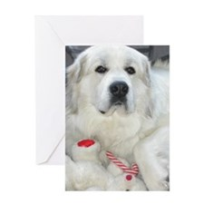 great pyrenees with teddy bear Greeting Cards