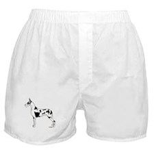 C Harl Standing Boxer Shorts