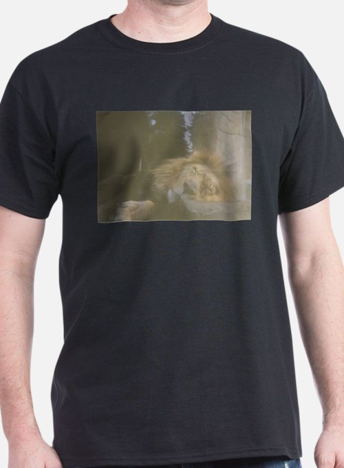Sleeping Lion T-Shirt