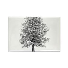 Cool Nature Rectangle Magnet (100 pack)