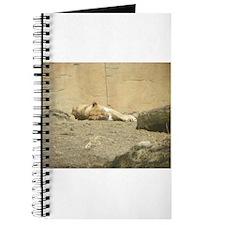 Lioness Journal