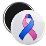 Blue and Pink Awareness Ribbon Magnet