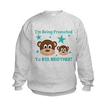 Promoted To BIG BROTHER! Sweatshirt