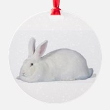 Cute Beveren Ornament