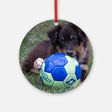 Australian Shepherd Pup Round Ornament