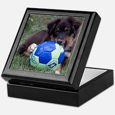 Australian Shepherd Pup Keepsake Box
