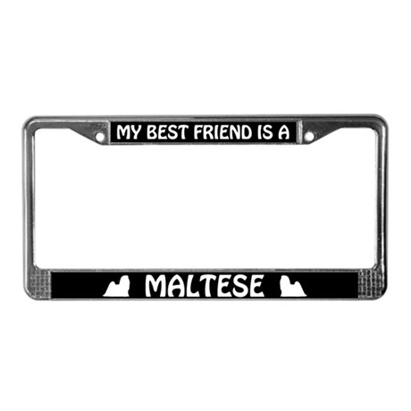 My Best Friend Is A Maltese License Plate Frame