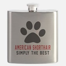 American Shorthair The Best Cat Designs Flask