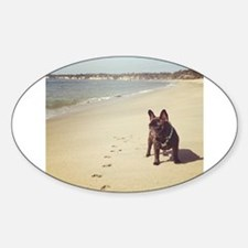French Bulldog on the Beach Decal