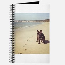 French Bulldog on the Beach Journal