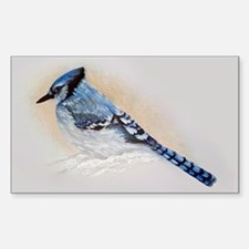 Blue Jay Drawing Decal