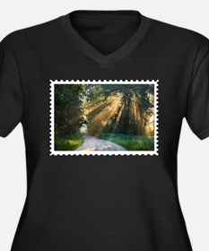 Country Road Sunlight Streaming Plus Size T-Shirt